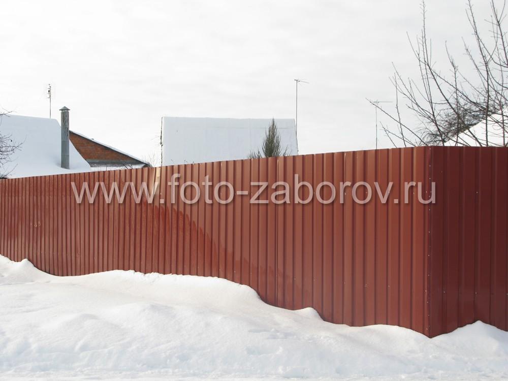 Фото Бюджетный вариант забора из профлиста, ворота со стояночным местом с навесом из