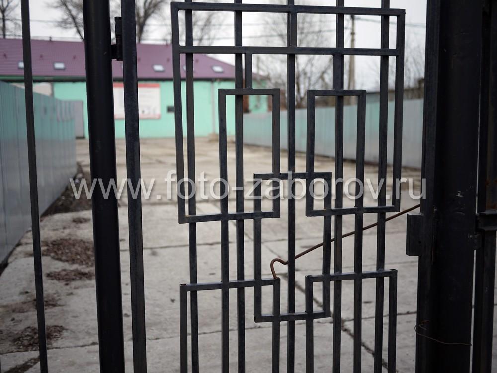 Фото Используя оргигинальные идеи можно добиться, чтобы обычные металлические ворота из