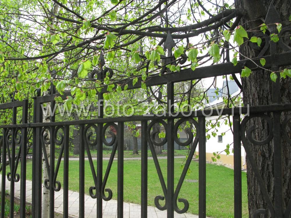 Фото Утопающий в весенней зелени кованый забор офисного
