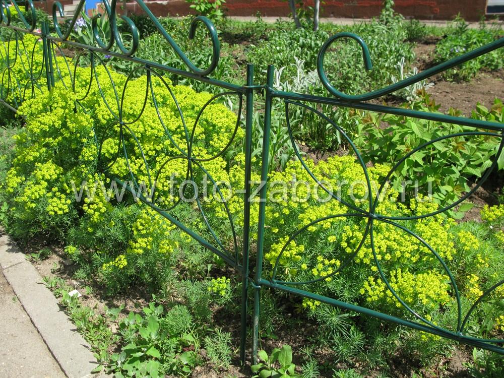Фото С любовью возделанный газон в окружении ограды из гнутого стального