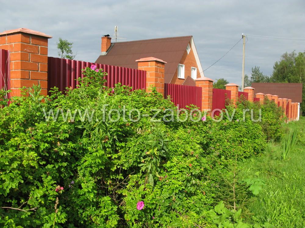 Зелёные насаждения перед забором добавляют красок в немного монотонную картину в красных