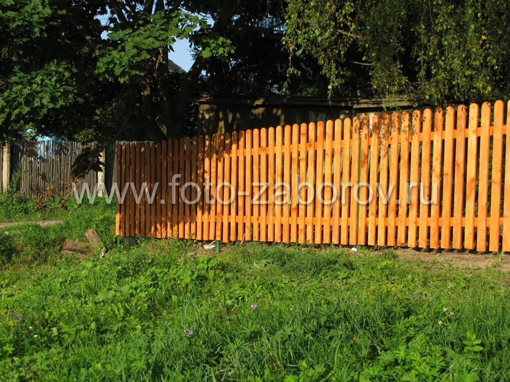 Деревенский забор тонирован в насыщенный жёлтый цвет. Пример, как выкрасить красиво простой