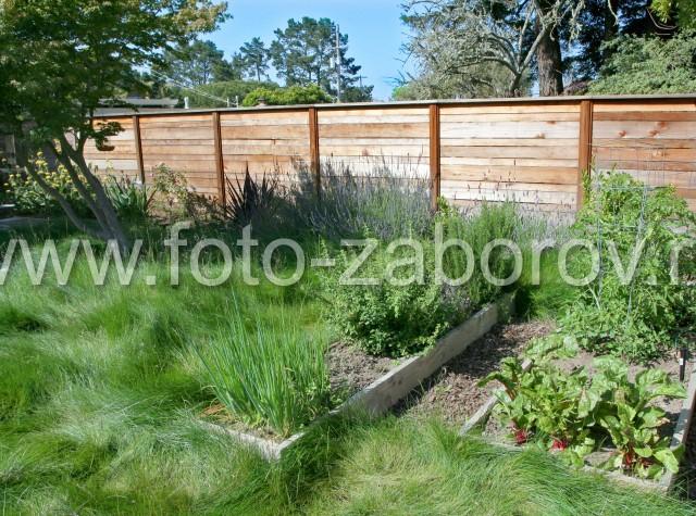 Деревянный забор из горизонтальных досок. Верх забора защищает деревянный
