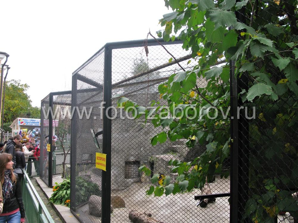 Фото Вольеры Московского зоопарка. Сетка-рабица в металлических каркасных рамах - грань,