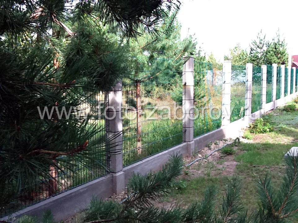 Фото Самарский заказ в молодняке. Сетчатое панельное ограждение для визуальной прозрачности