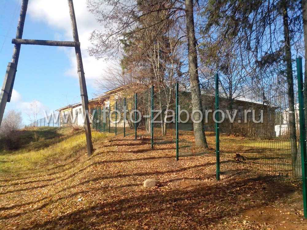 Фото Ограждение территории Калашниковского экономического техникума, сделанное из сварной сетки