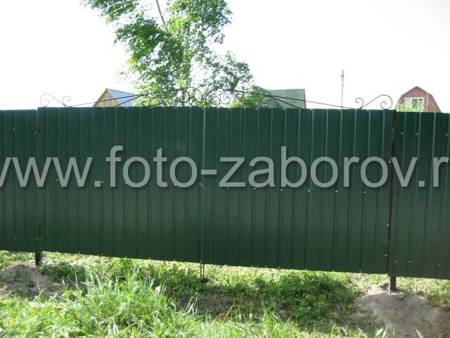 Фото Недорогие распашные ворота из профнастила для садового