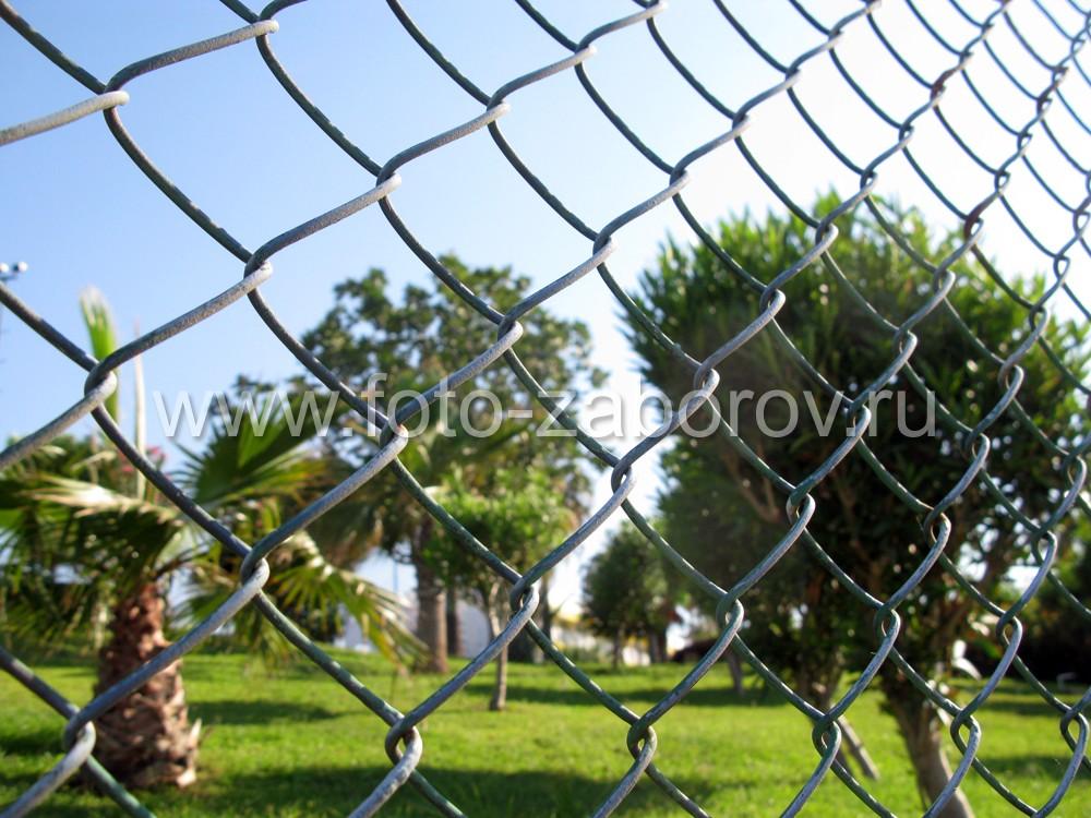Фото Использование природного камня и высокой сетки-рабицы для ограды