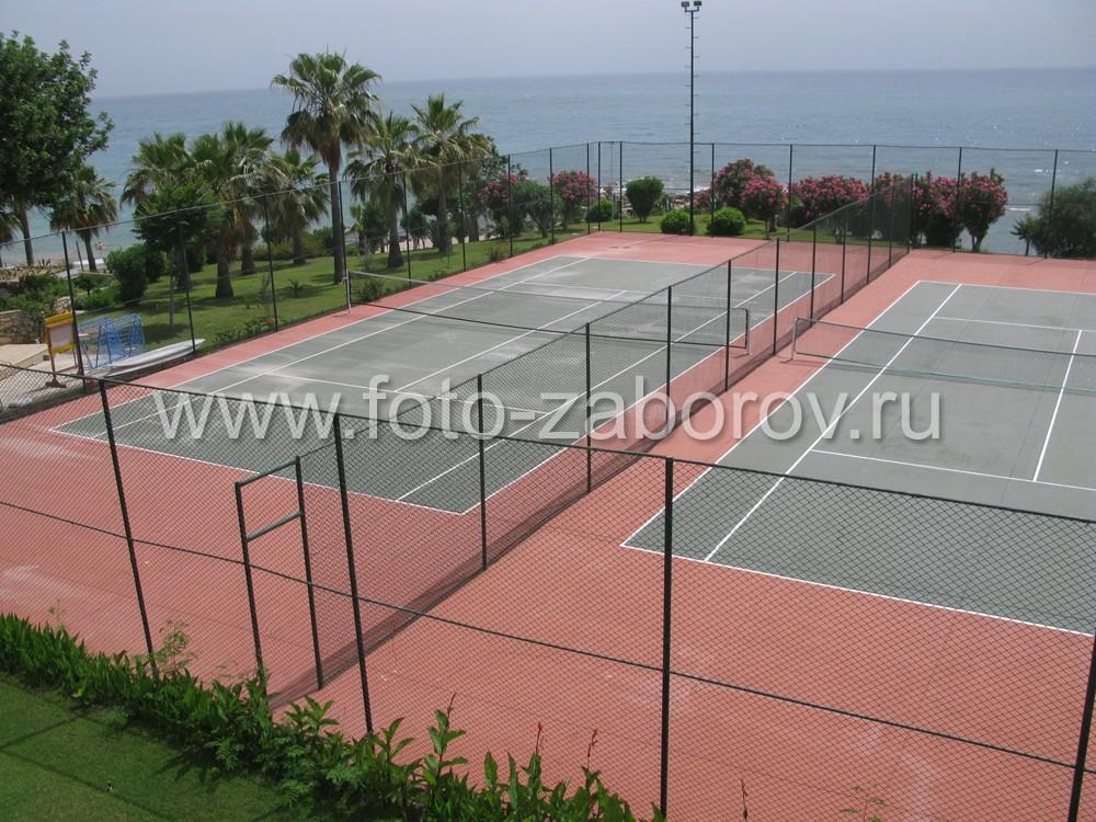 Теннисный корт с двумя игровыми полями на берегу
