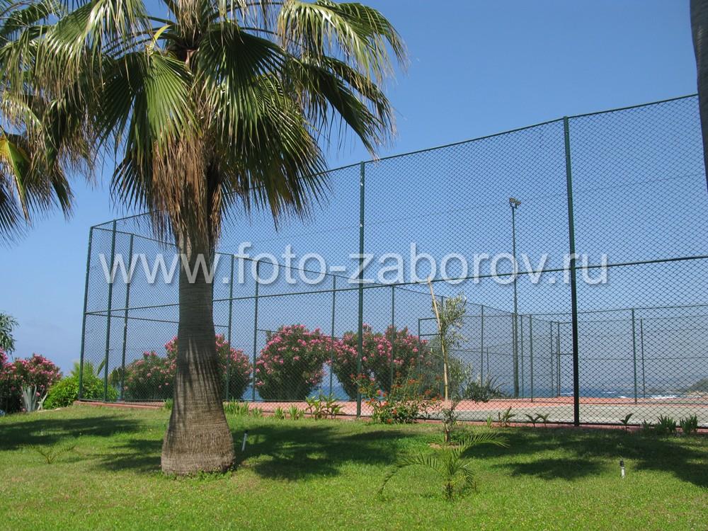 Игра в теннис в окружении тропической