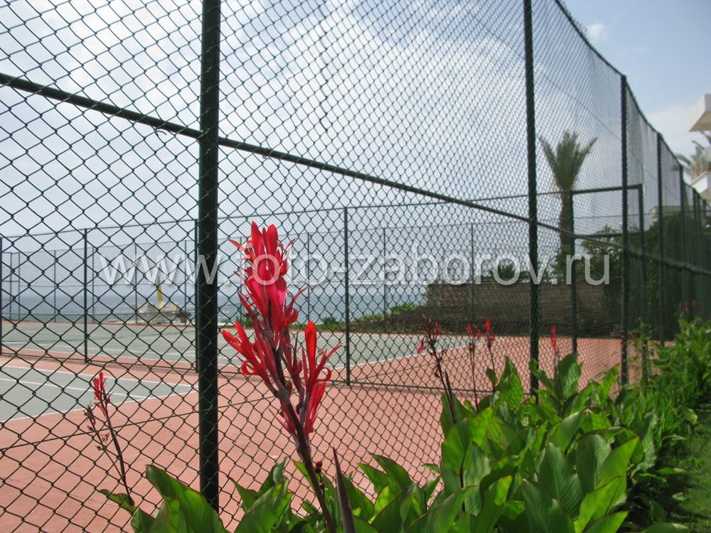 Спортивная зона заботливо декорирована цветниками и