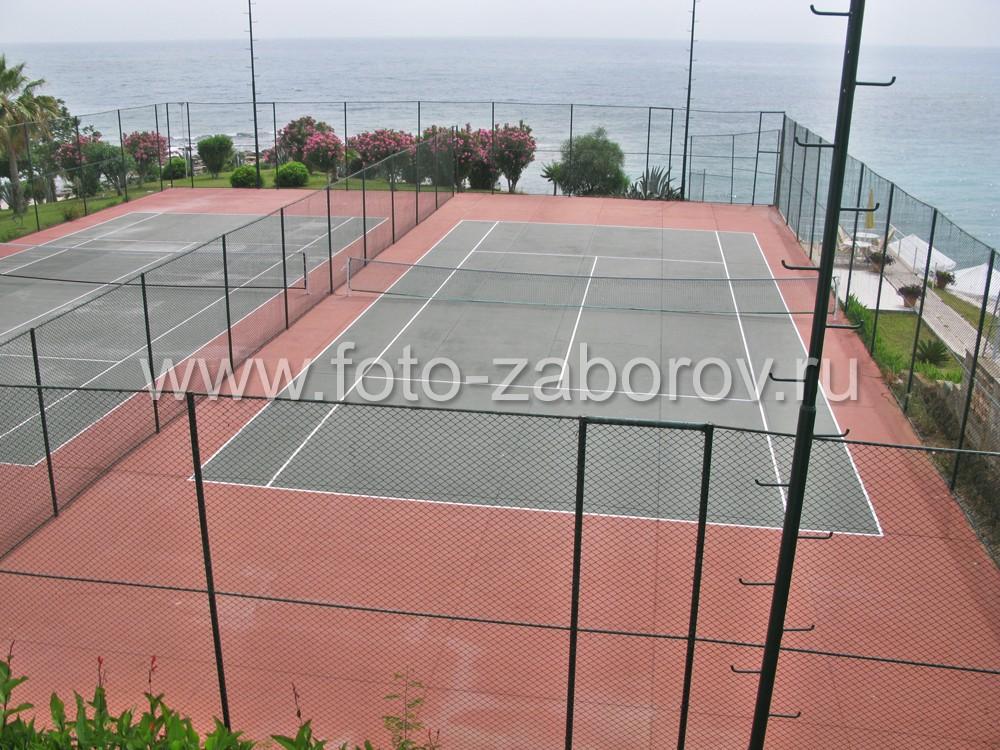 Фото теннисного корта на берегу