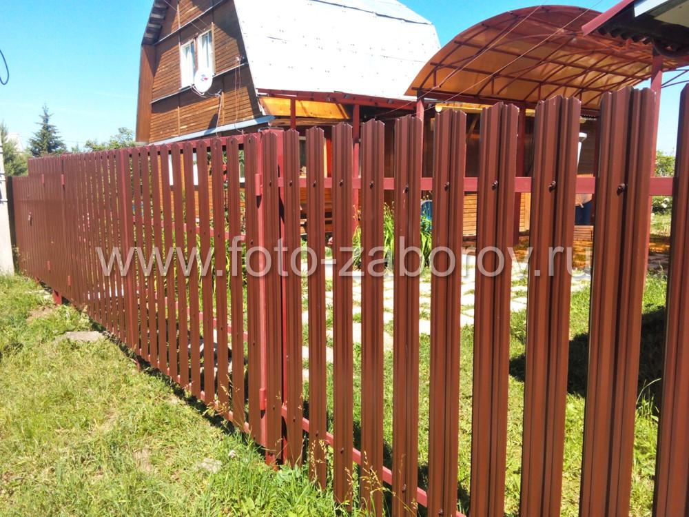 Фото въездной группы - калитки и ворот. Выполнены одной высоты с забором и визуально практически