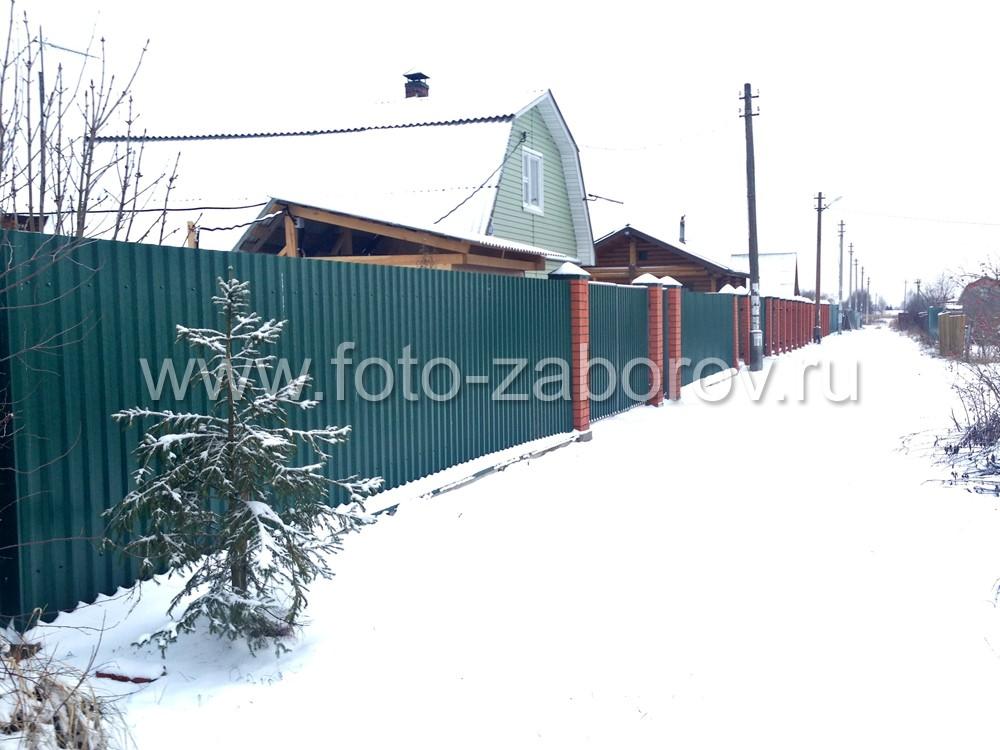 Готовый забор из зелёного профнастила, фотография декабрь 2015
