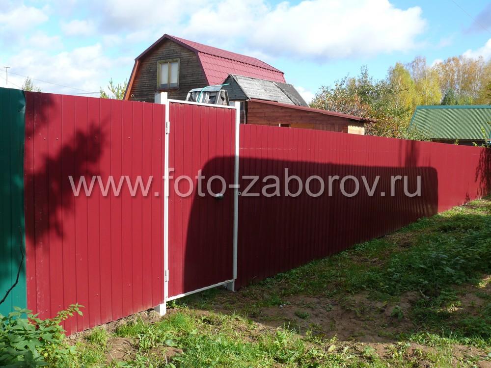 Недорогой забор из профнастила с распашными воротами и смежной
