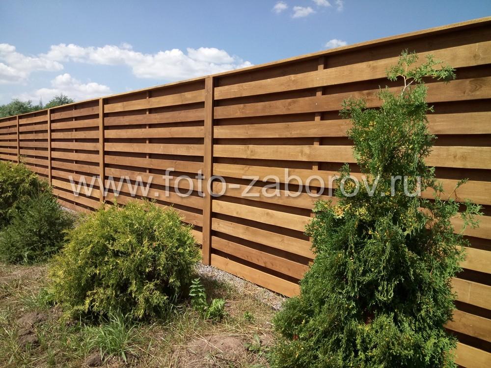 Несомненно, любой забор украсят растущие рядом невысокие деревья или кусты. Например,