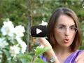 Живые изгороди из кустарников: пузыреплодника, гортензии, дерены, жасмина.